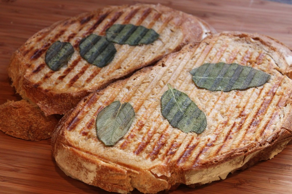 The best sandwich you'll ever eat: Ricotta Panini with Fresh Sage